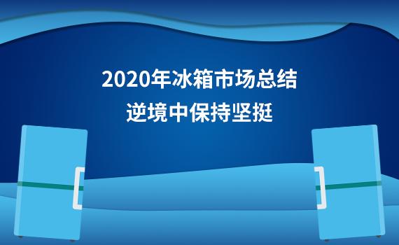 2020年冰箱市场总结:逆境中保持坚挺