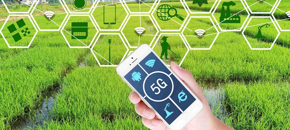 数字农业:我们为什么要用5G?